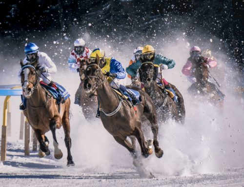 Fundraising Ideas and Tips 2020 – What is a Race Night Form Guide?